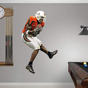 Andre Johnson Miami Fathead Wall Decal